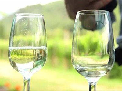 Degustazioni vini olio prodotti tipici Arnasco Savona