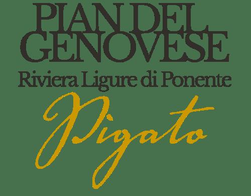 Pigato Pian del genovese - Gallizia 1250